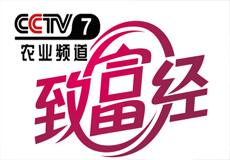蒙北燕麦登录CCTV7央视[致富经]李刚岭赔光6000万之后如何成为中国天然燕麦第一人